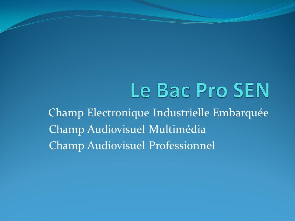 Le Bac Pro SEN Champ Electronique Industrielle Embarquée