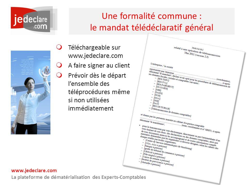 Une formalité commune : le mandat télédéclaratif général