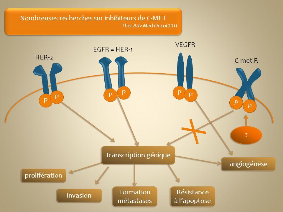 Nombreuses recherches sur inhibiteurs de C-MET