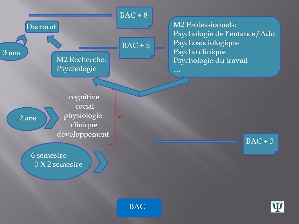 BAC + 8 M2 Professionnels: Psychologie de l'enfance/Ado. Psychosociologique. Psycho clinique. Psychologie du travail.