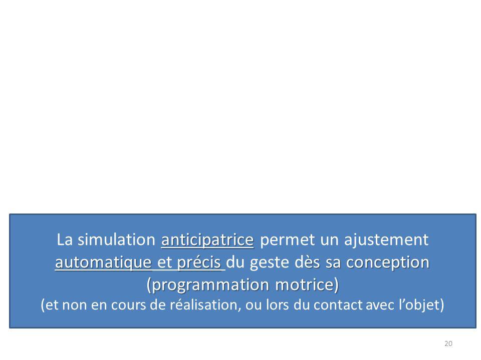La simulation anticipatrice permet un ajustement automatique et précis du geste dès sa conception (programmation motrice) (et non en cours de réalisation, ou lors du contact avec l'objet)
