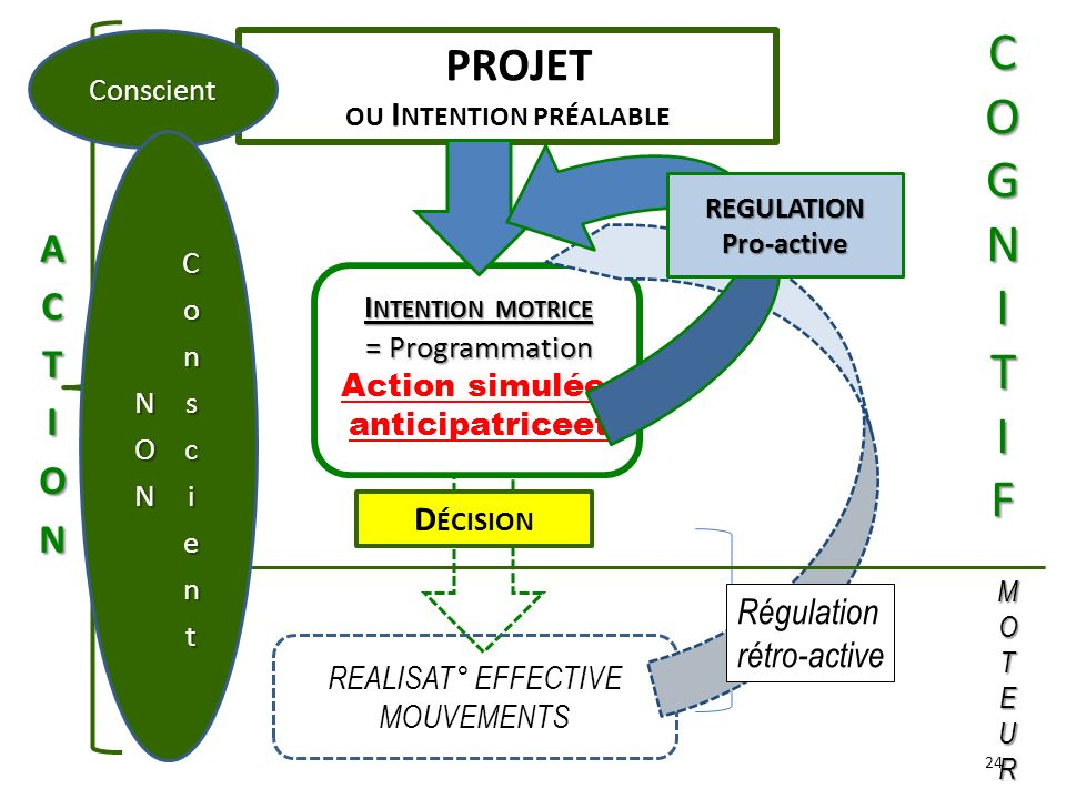 REGULATION Pro-active Action simulée, anticipatriceet