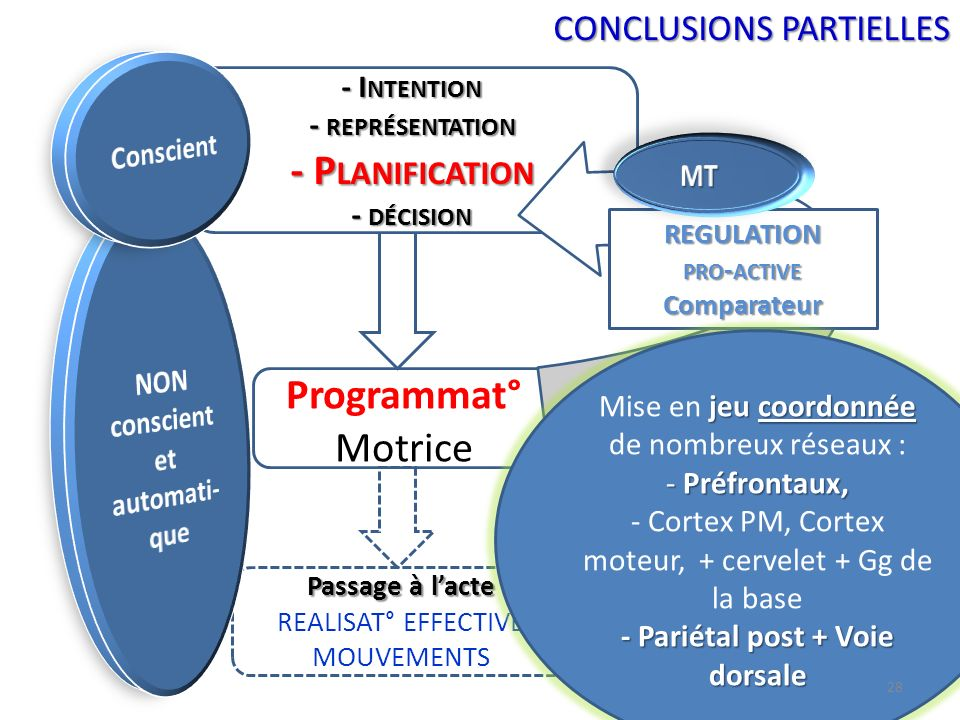 - Planification Programmat° Motrice CONCLUSIONS PARTIELLES - Intention