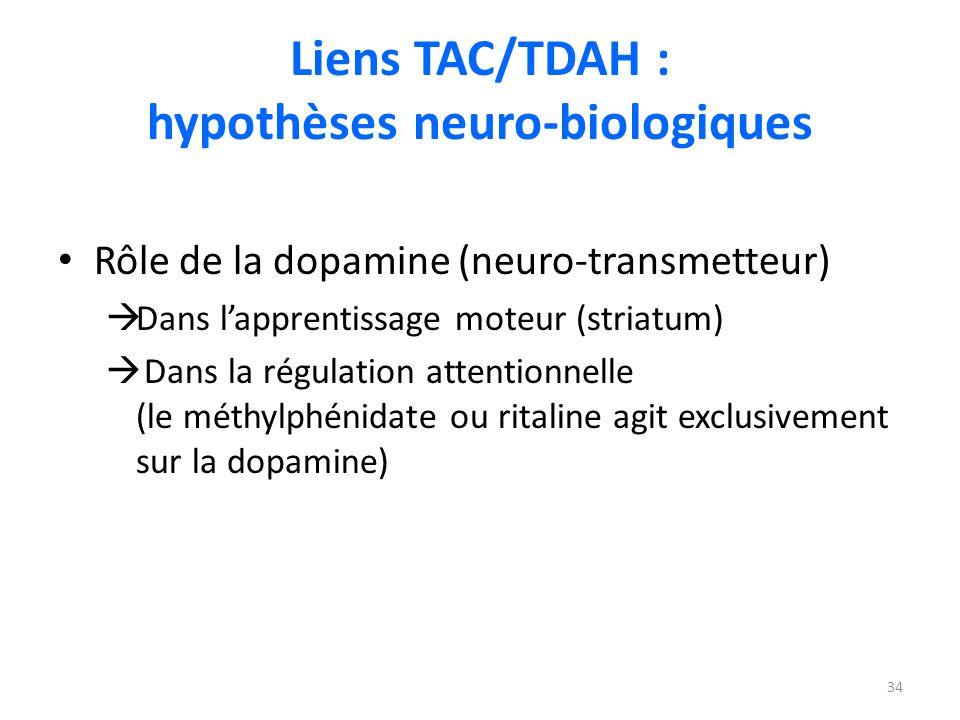 Liens TAC/TDAH : hypothèses neuro-biologiques