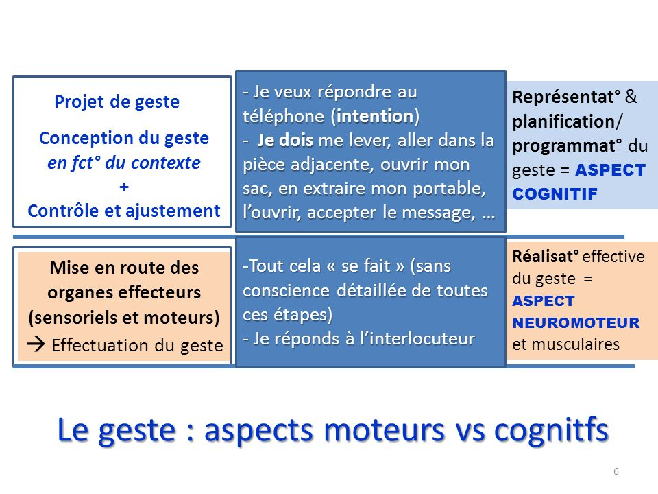 Le geste : aspects moteurs vs cognitfs