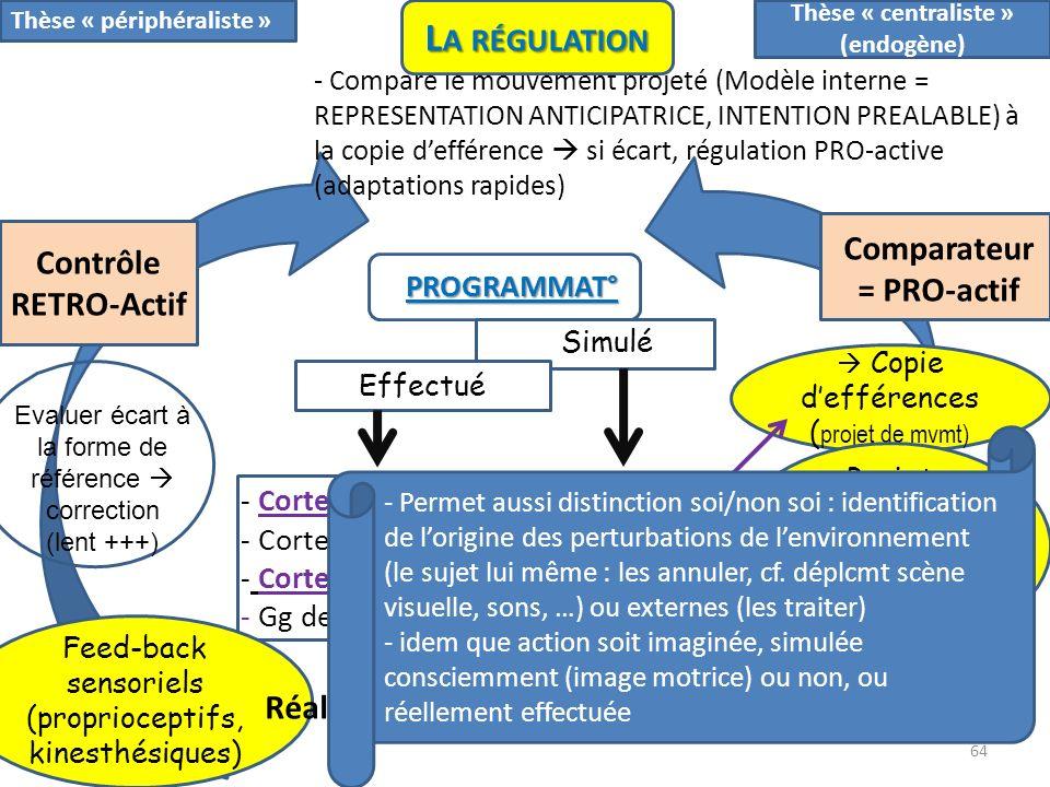 Thèse « centraliste » (endogène) Comparateur= PRO-actif