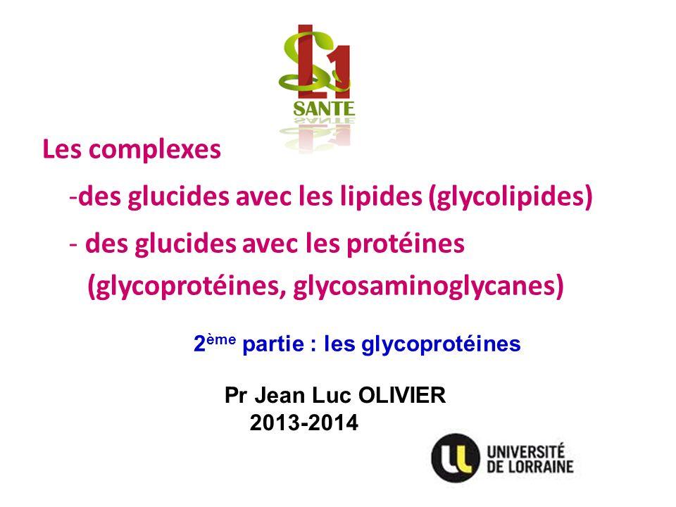 des glucides avec les lipides (glycolipides)