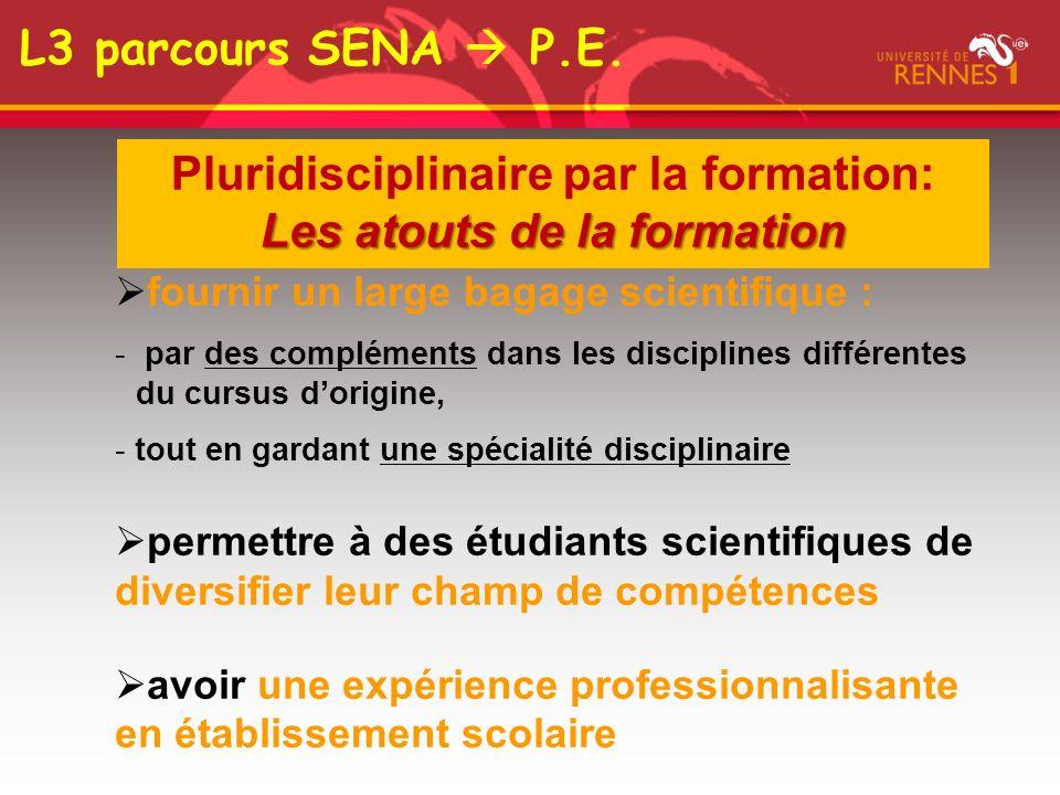 Pluridisciplinaire par la formation: Les atouts de la formation