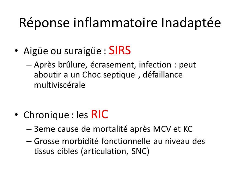 Réponse inflammatoire Inadaptée