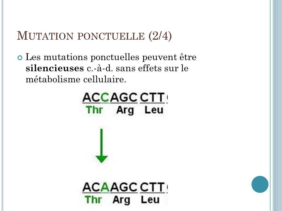 Mutation ponctuelle (2/4)