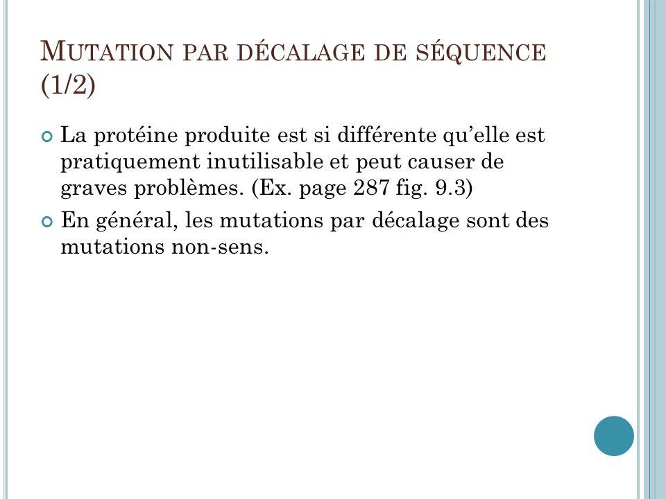 Mutation par décalage de séquence (1/2)