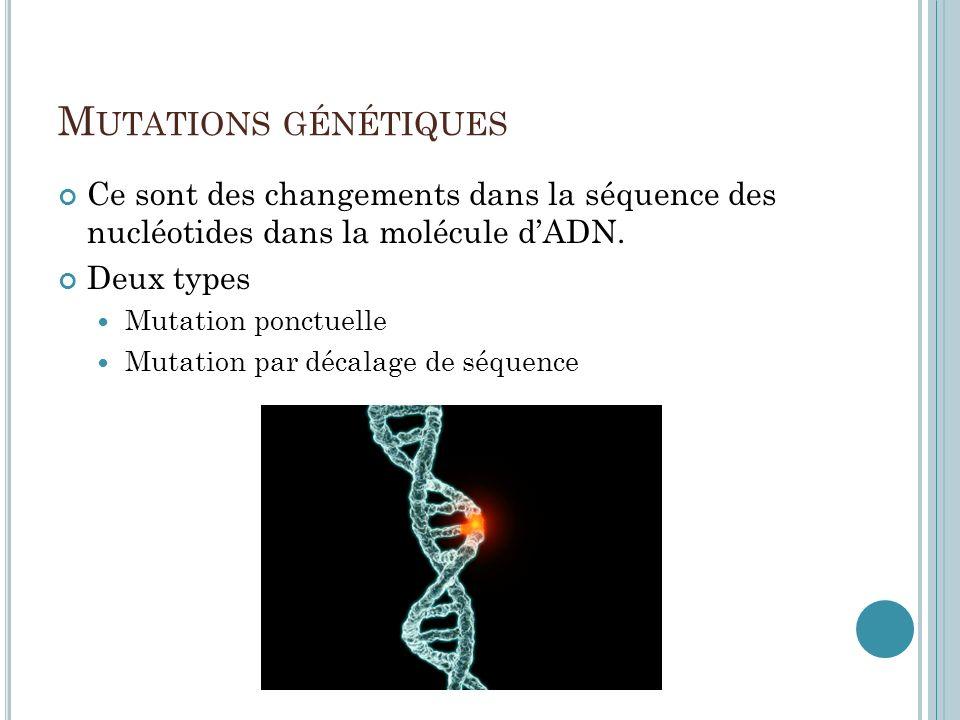 Mutations génétiques Ce sont des changements dans la séquence des nucléotides dans la molécule d'ADN.
