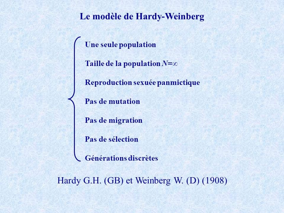 Le modèle de Hardy-Weinberg