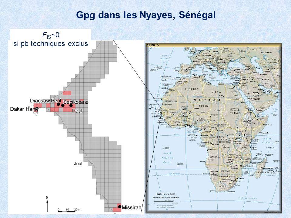 Gpg dans les Nyayes, Sénégal