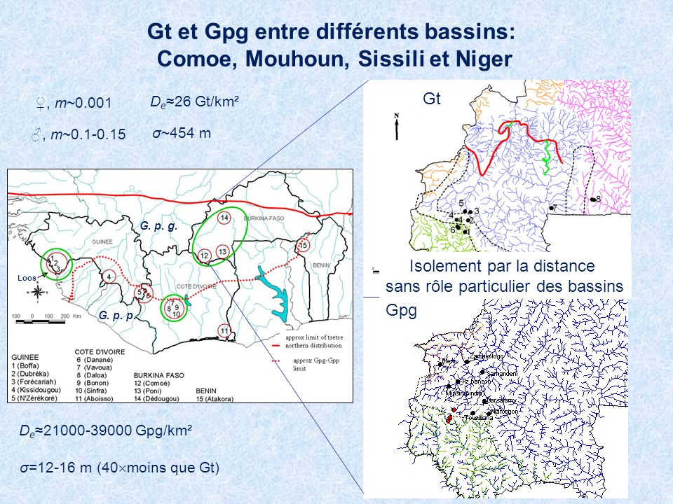 Gt et Gpg entre différents bassins: Comoe, Mouhoun, Sissili et Niger