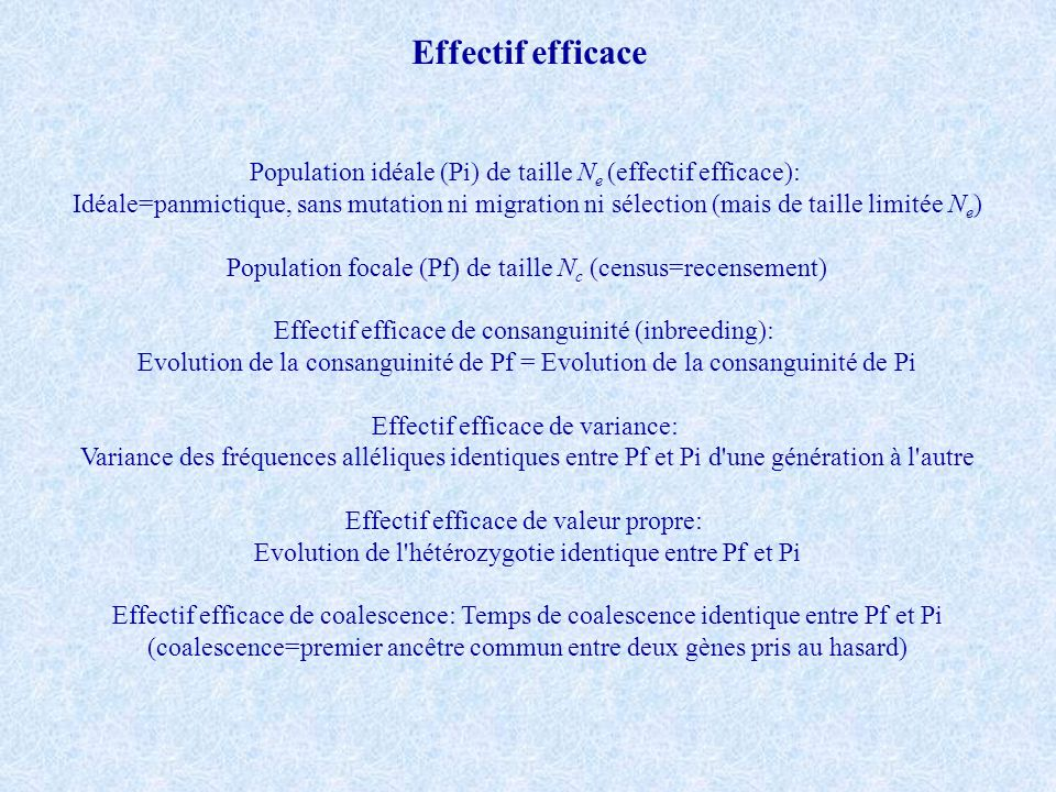 Effectif efficace Population idéale (Pi) de taille Ne (effectif efficace):