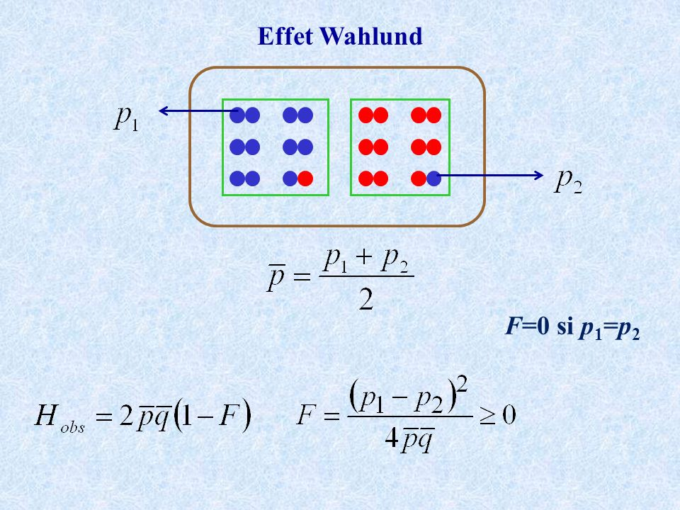 Effet Wahlund F=0 si p1=p2