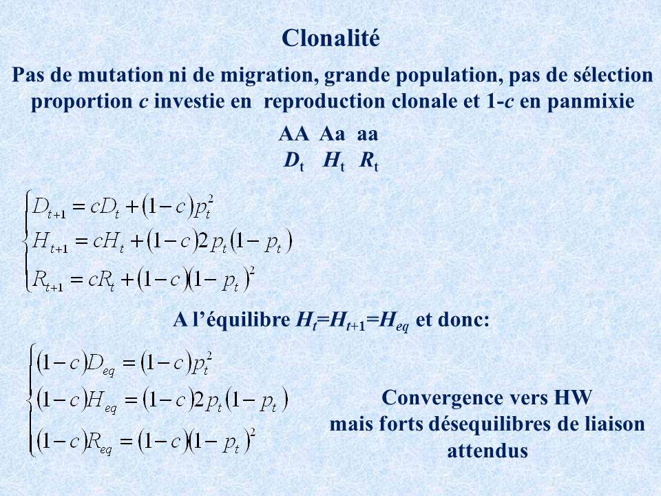 Clonalité Pas de mutation ni de migration, grande population, pas de sélection. proportion c investie en reproduction clonale et 1-c en panmixie.