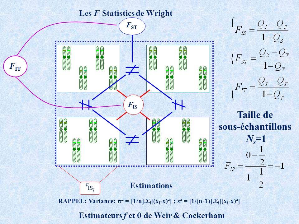 Les F-Statistics de Wright