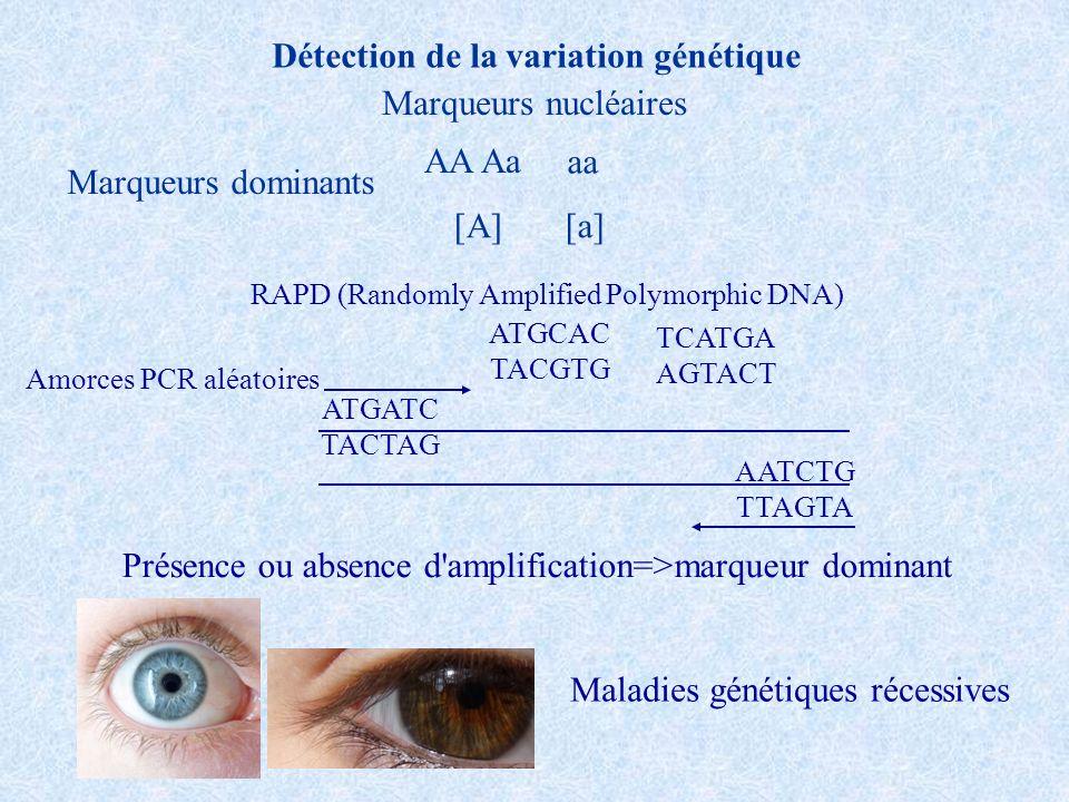Détection de la variation génétique