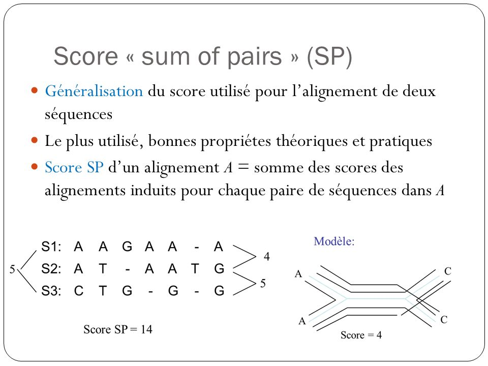 Score « sum of pairs » (SP)