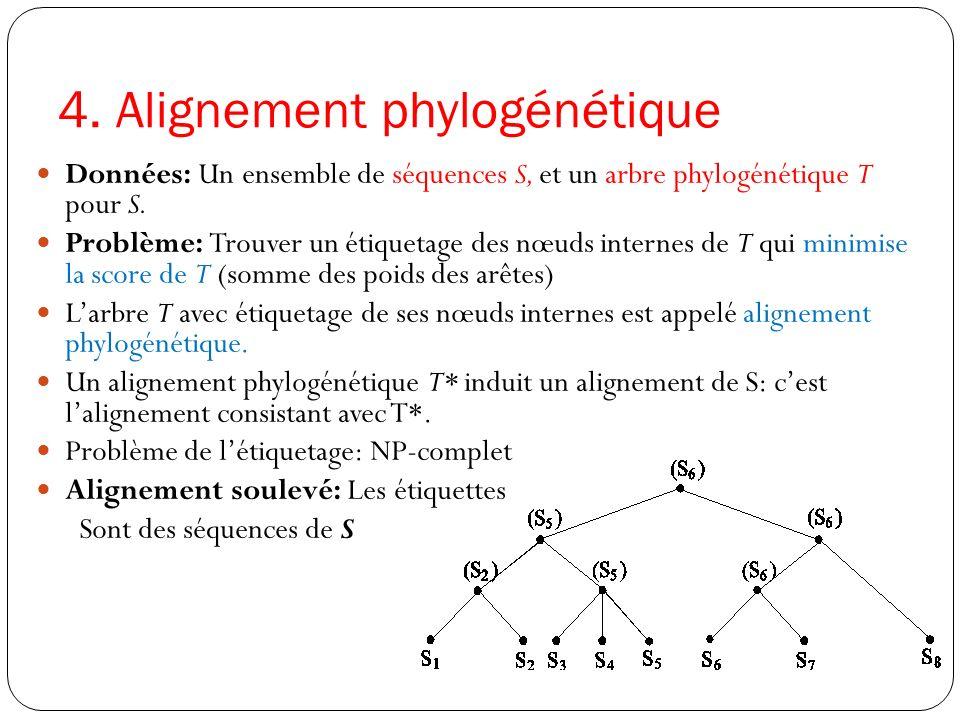 4. Alignement phylogénétique