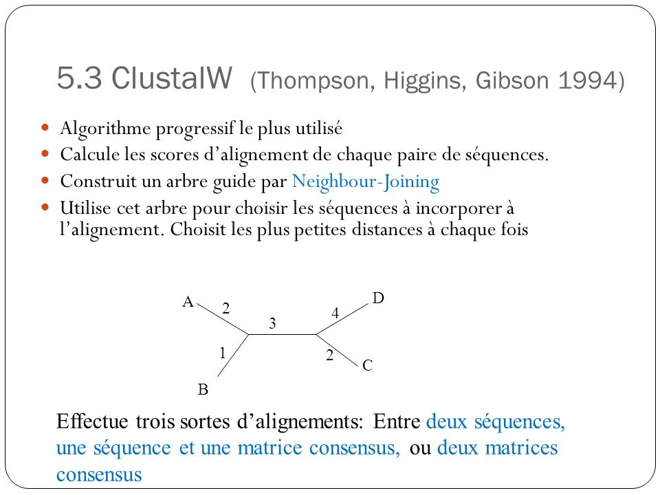 5.3 ClustalW (Thompson, Higgins, Gibson 1994)