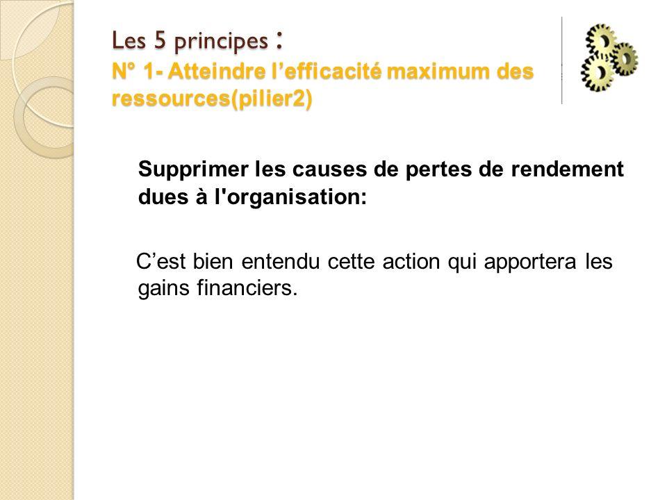 Les 5 principes : N° 1- Atteindre l'efficacité maximum des ressources(pilier2)