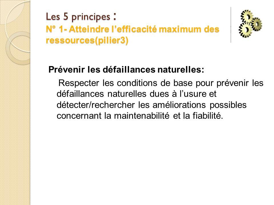 Les 5 principes : N° 1- Atteindre l'efficacité maximum des ressources(pilier3)