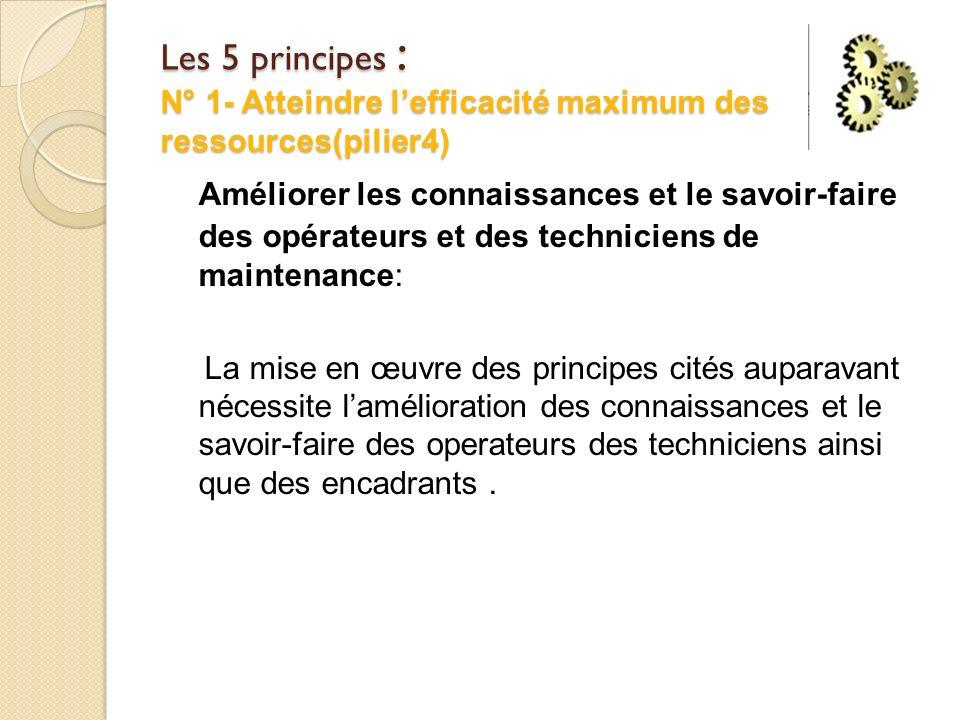 Les 5 principes : N° 1- Atteindre l'efficacité maximum des ressources(pilier4)