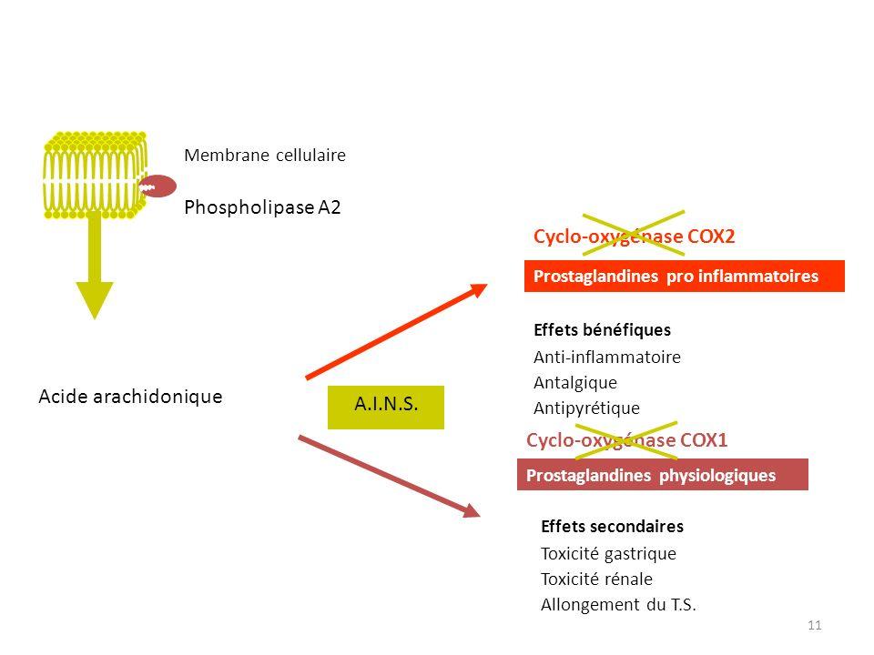 Phospholipase A2 Cyclo-oxygénase COX2 Acide arachidonique A.I.N.S.