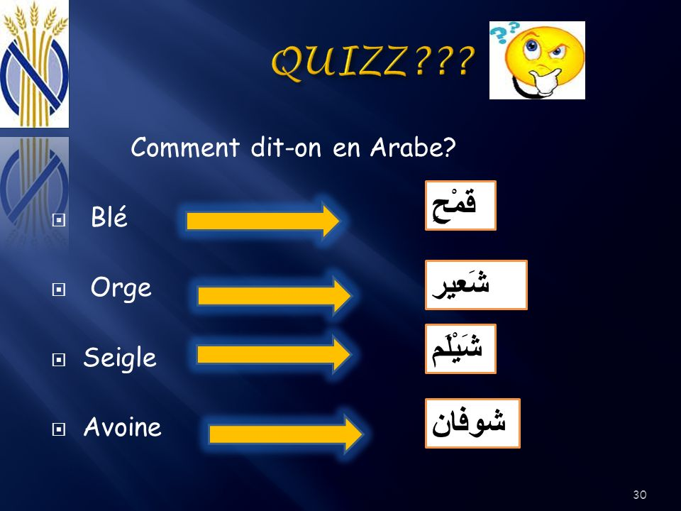 QUIZZ قَمْحٍ شَعير شَيْلَم شوفان Comment dit-on en Arabe Blé Orge