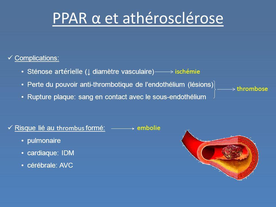 PPAR α et athérosclérose