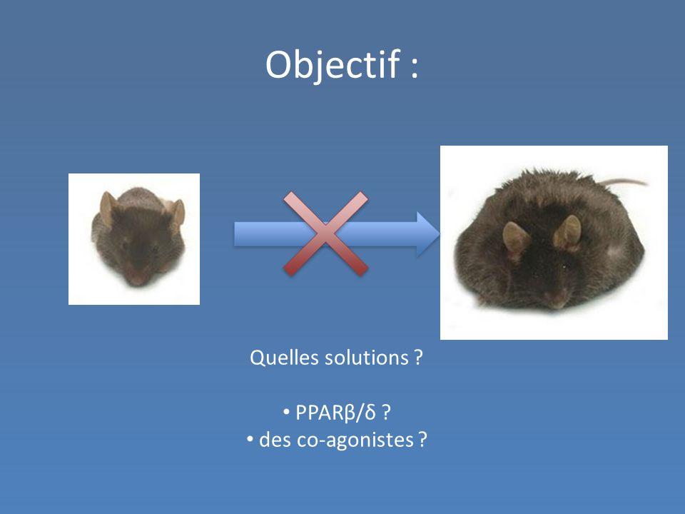 Objectif : Quelles solutions PPARβ/δ des co-agonistes