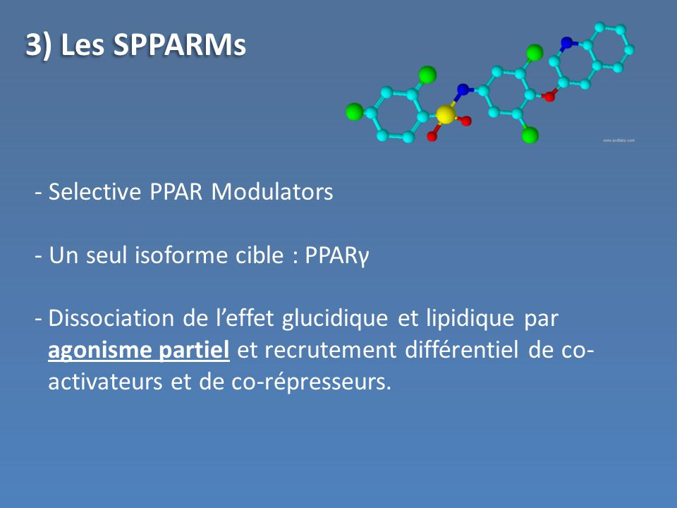 3) Les SPPARMs Selective PPAR Modulators