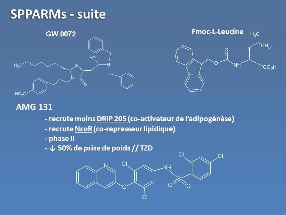 SPPARMs - suite Fmoc-L-Leucine. GW 0072. AMG 131 - recrute moins DRIP 205 (co-activateur de l'adipogénèse)