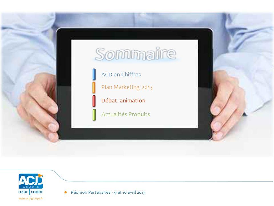Sommaire ACD en Chiffres Plan Marketing 2013 Débat- animation