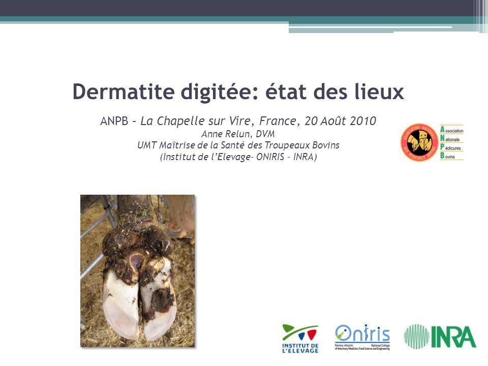 Dermatite digitée: état des lieux ANPB – La Chapelle sur Vire, France, 20 Août 2010 Anne Relun, DVM UMT Maîtrise de la Santé des Troupeaux Bovins (Institut de l'Elevage– ONIRIS – INRA)