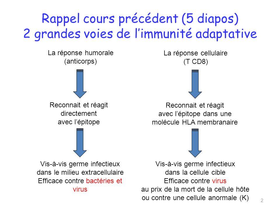 Rappel cours précédent (5 diapos) 2 grandes voies de l'immunité adaptative