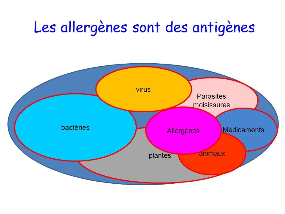 Les allergènes sont des antigènes