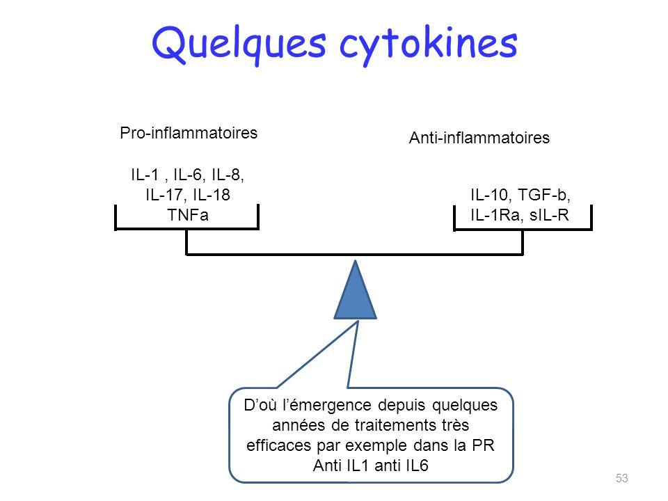 Quelques cytokines Pro-inflammatoires Anti-inflammatoires