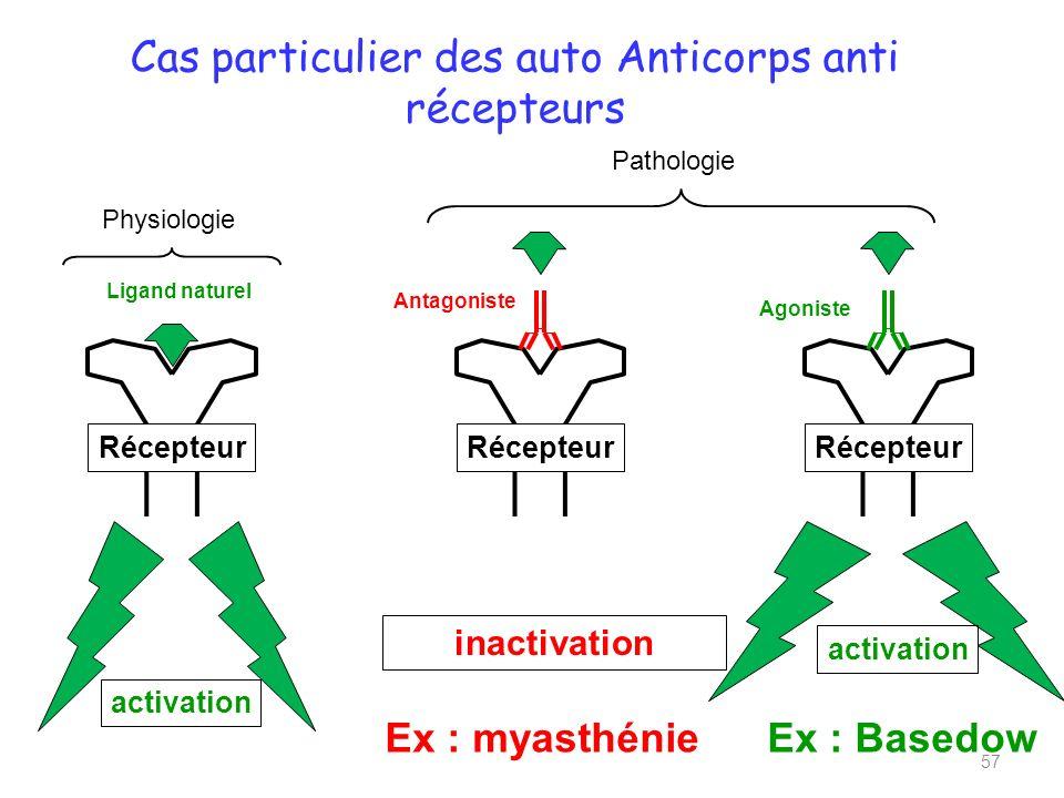 Cas particulier des auto Anticorps anti récepteurs