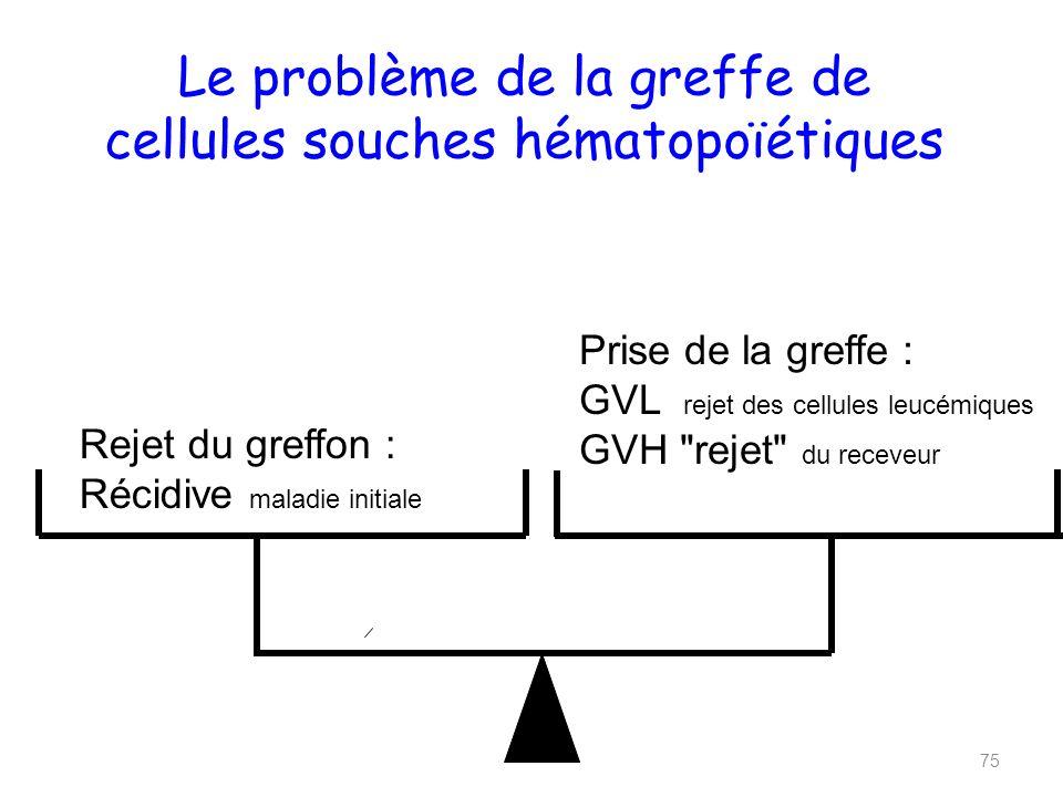 Le problème de la greffe de cellules souches hématopoïétiques