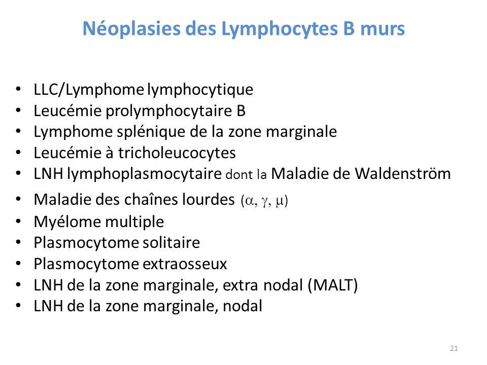 Néoplasies des Lymphocytes B murs