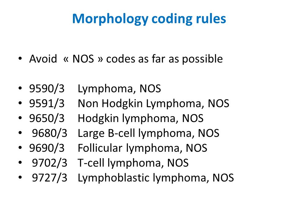 Morphology coding rules