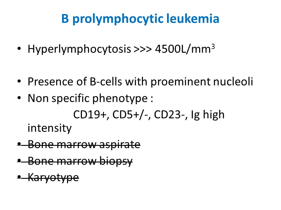 B prolymphocytic leukemia