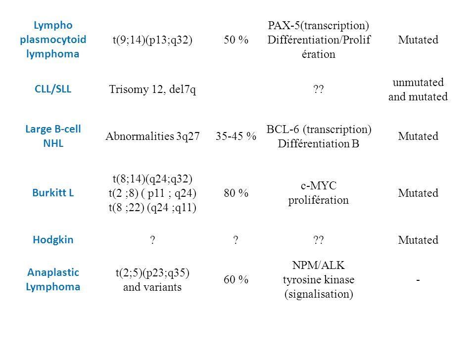 Lympho plasmocytoid lymphoma