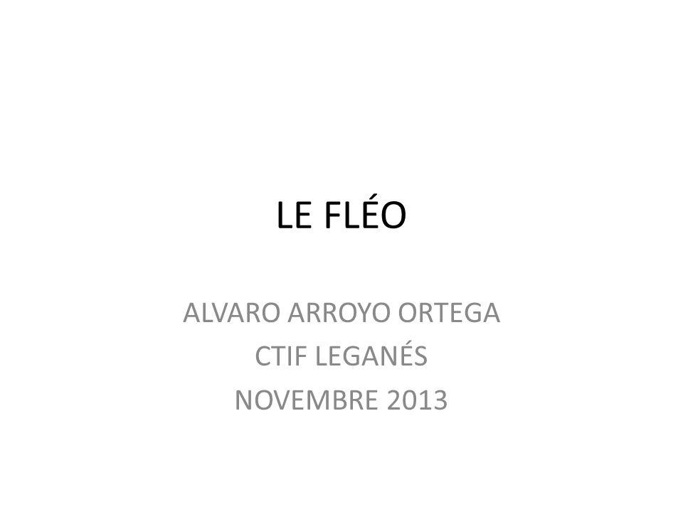 ALVARO ARROYO ORTEGA CTIF LEGANÉS NOVEMBRE 2013