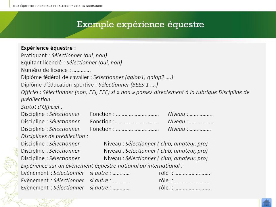 Exemple expérience équestre