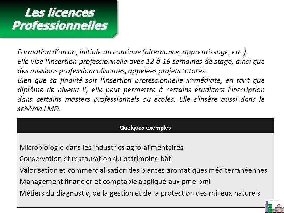 Les licences Professionnelles